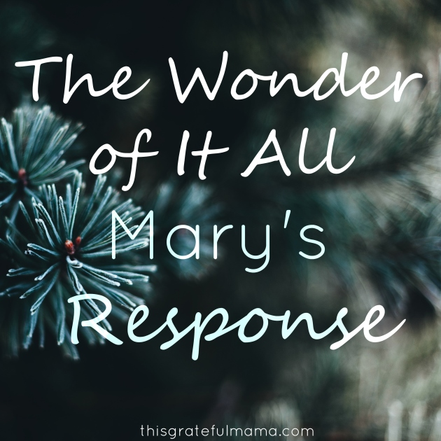 The Wonder Of It All - Mary's Response | thisgratefulmama.com