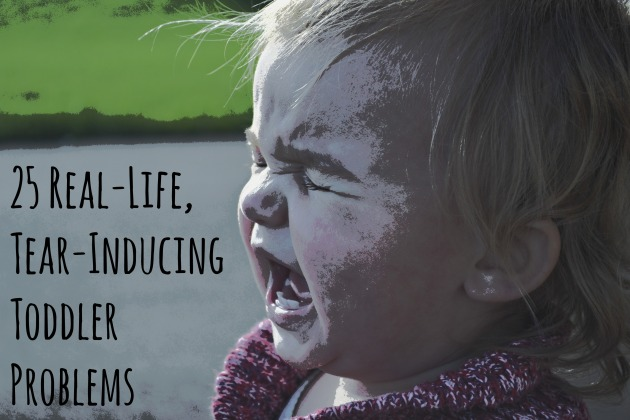 25 Real Life Tear Inducing Toddler Problems
