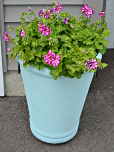 A Fun Weekend Project - Spray Painted Flower Pots