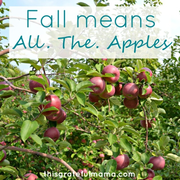 5 Reasons This Mama Is Grateful For Fall | thisgratefulmama.com