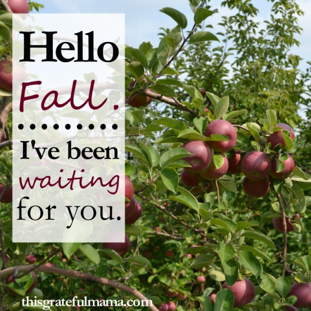 Hello Fall. I've Been Waiting For You - 5 Reasons This Mama Loves Fall | thisgratefulmama.com